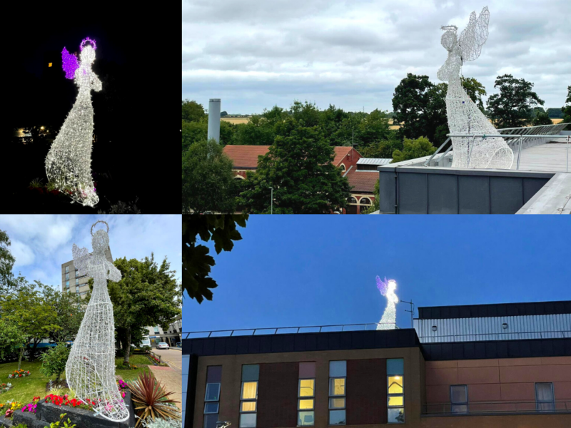 Angel statues situated across Hull Royal Infirmary and Castle Hill Hospital
